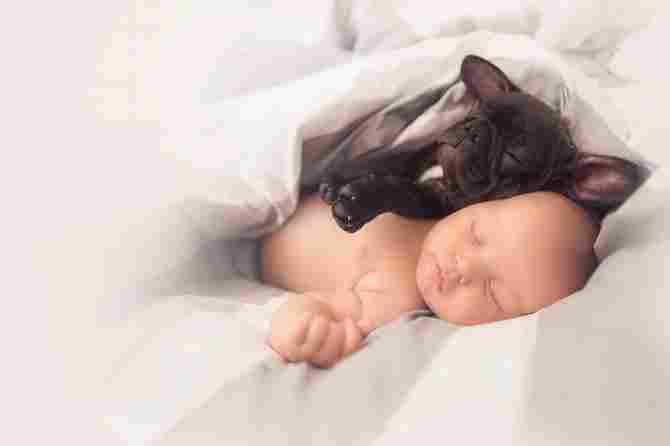 「ファーリーは時々非常に柔らかくて不器用です-彼はまだまだ赤ちゃんであることを覚えておく必要があります」