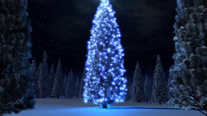 The most original Christmas trees