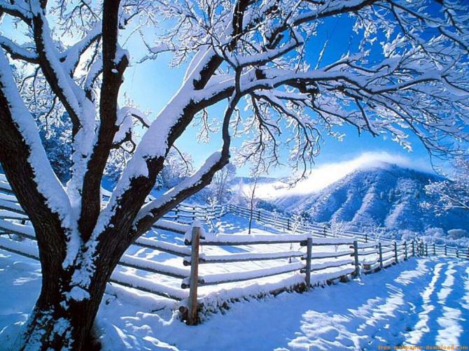 Of winter