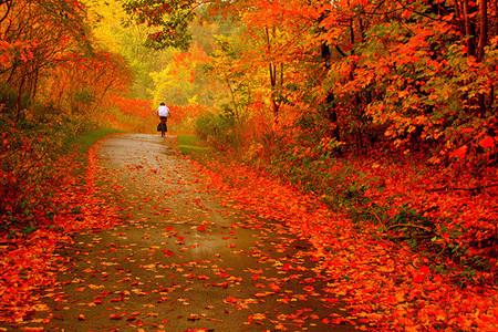 Poème d'automne
