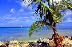 Ilha de Trinidad (América)