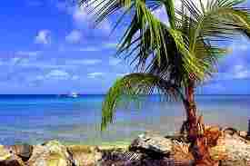 Trinidad Island (America)