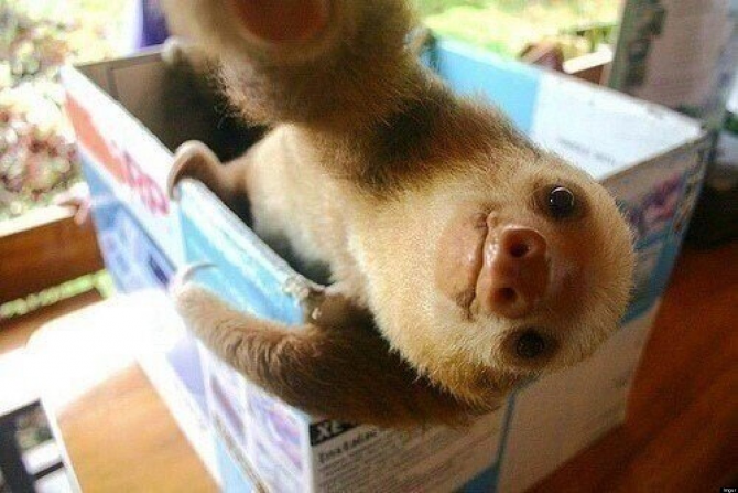 A selfie, smiling