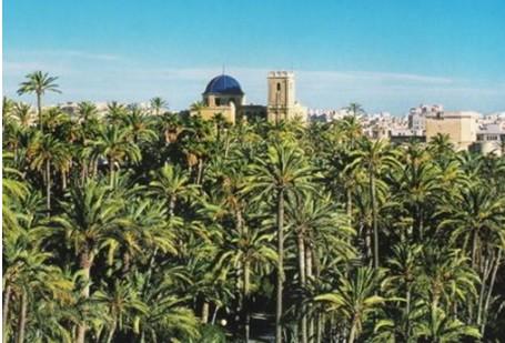 Elche / Elx (Comunidade Valenciana)