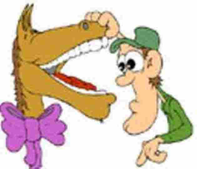 A gift horse in the teeth not look
