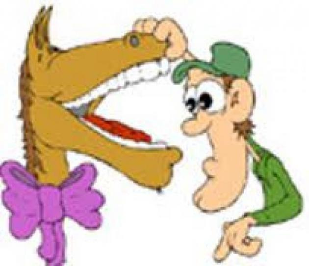 Em um cavalo presente, você não pode ver seus dentes