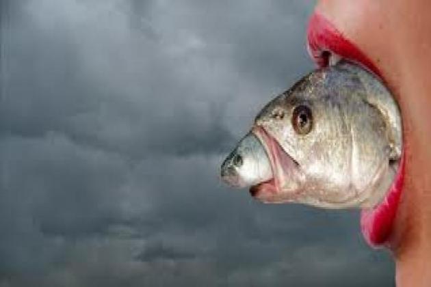 O Peixe morre pela boca