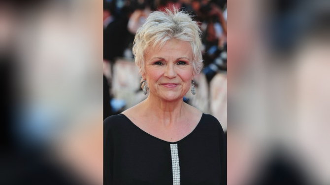 Best Julie Walters movies