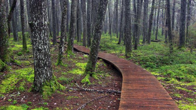 Кеджимкуджик национальный парк