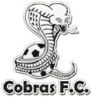 Cobras FC Toronto