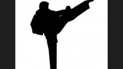 Aktor seni bela diri terbaik (karateka) di bioskop