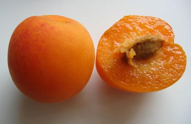 The plumcot
