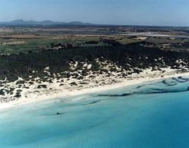 Es Trenc de Campos beach (Mallorca)
