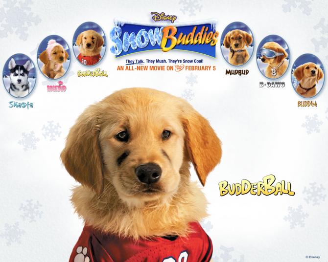 Budderball