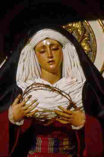 virgin of the students
