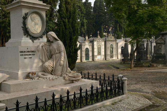 Cemitério dos Prazeres (Portugal)