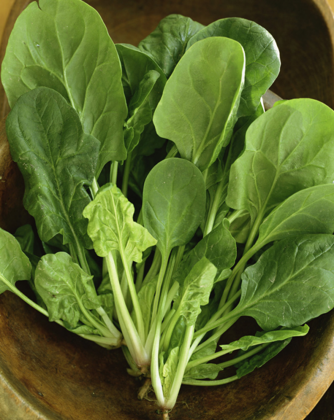 Alface e vegetais de folhas verdes