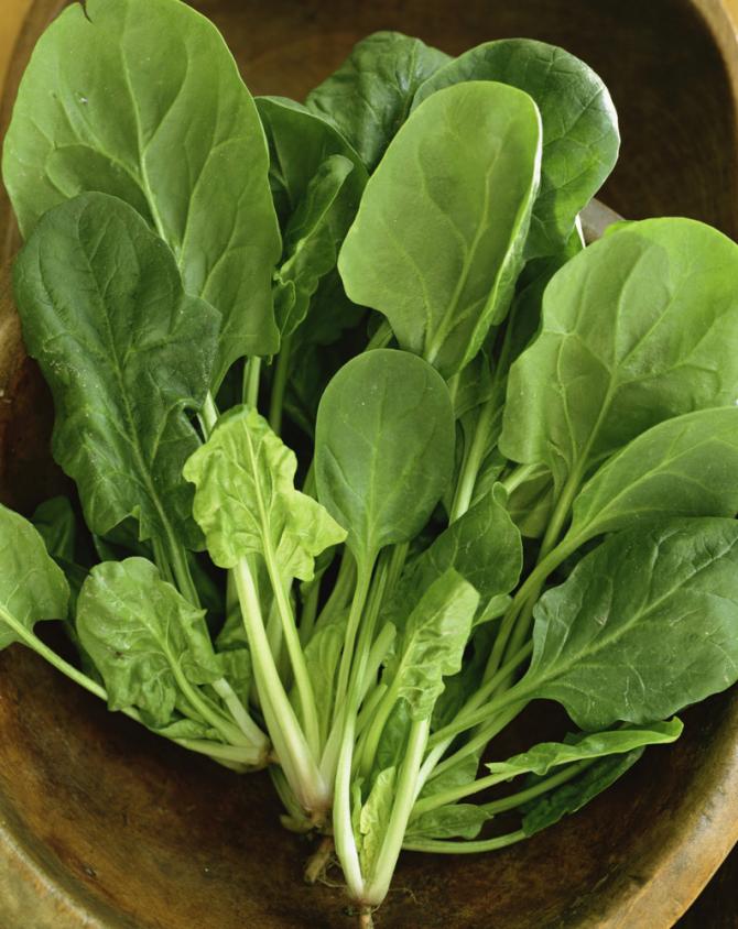 Enciams i verdures de fulla verda