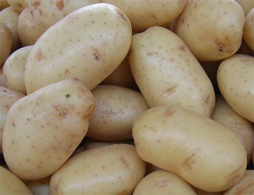 Rå potatis