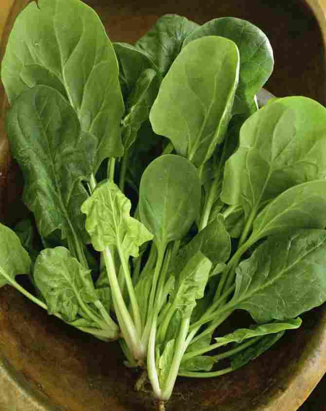 Sayuran dan sayur-sayuran berdaun hijau