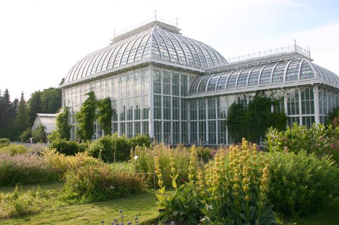 Jardin botanique de l'université (Helsinki)