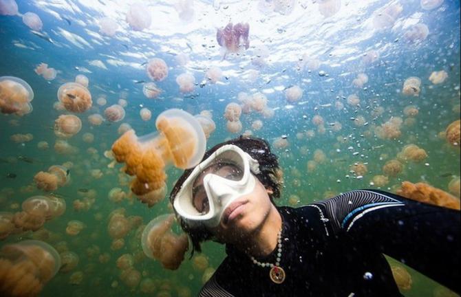 Selfie entre águas-vivas
