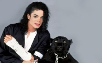 michael / the panther