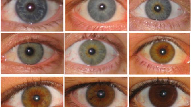 Самые красивые и яркие цвета глаз