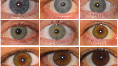 Die schönsten und auffälligsten Augenfarben