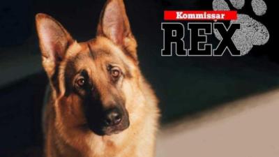 Comisario Rex, un policía diferente, y sus distintos compañeros