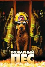 Пожарный пёс
