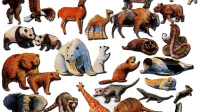 Самые старые животные на планете