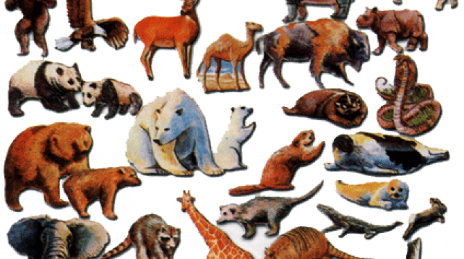The oldest animals on the planet