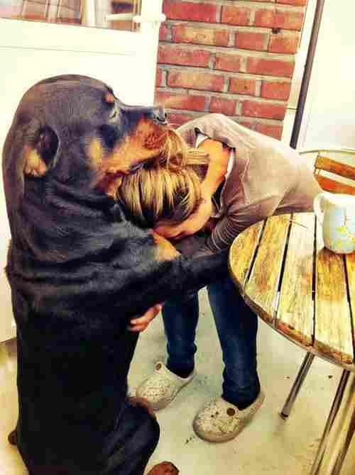 Abrazo de amigo y compañero
