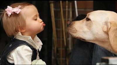 Küsse von unseren Freunden die Hunde