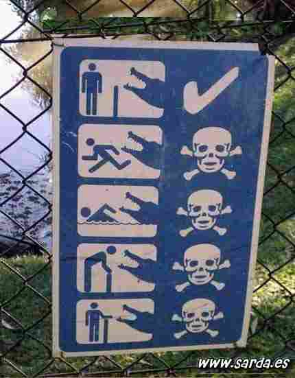 Dangerous crocodiles of death ...