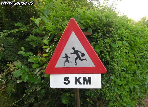 People running like crazy a marathon of 5 kilometers?
