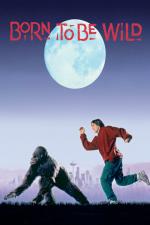 Una gorilla per amica