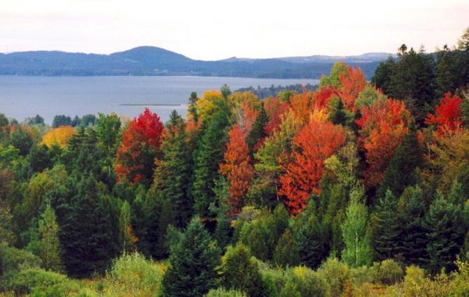 Мемремагог Лейк (Канада)