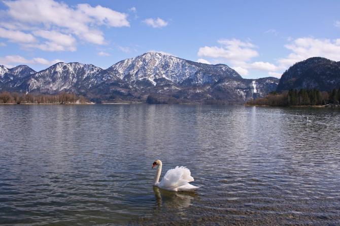 Кохельское озеро (Германия)