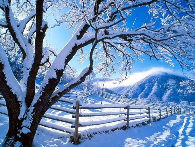 冬 Fuyu (hiver)