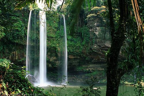 Чьяпас-Мисоль-Ха Водопад.