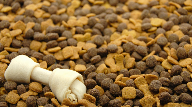 The best feed for dogs