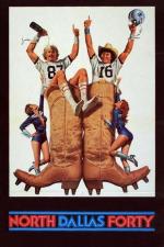 Die Bullen von Dallas
