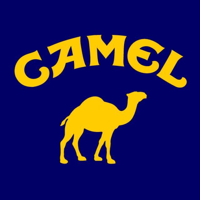 Камель - Дромадер.
