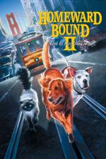 Homeward Bound II: Lost in San Francisco