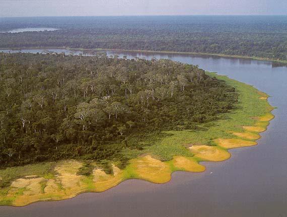 Река Маморе (Боливия)