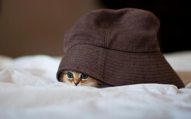 Deze hoed weegt veel en met mij gaat het goed