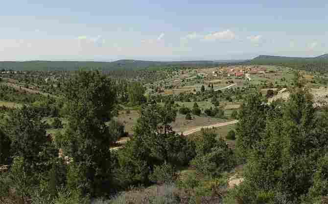 Herrera de Soria, Soria - (14 inhabitants)