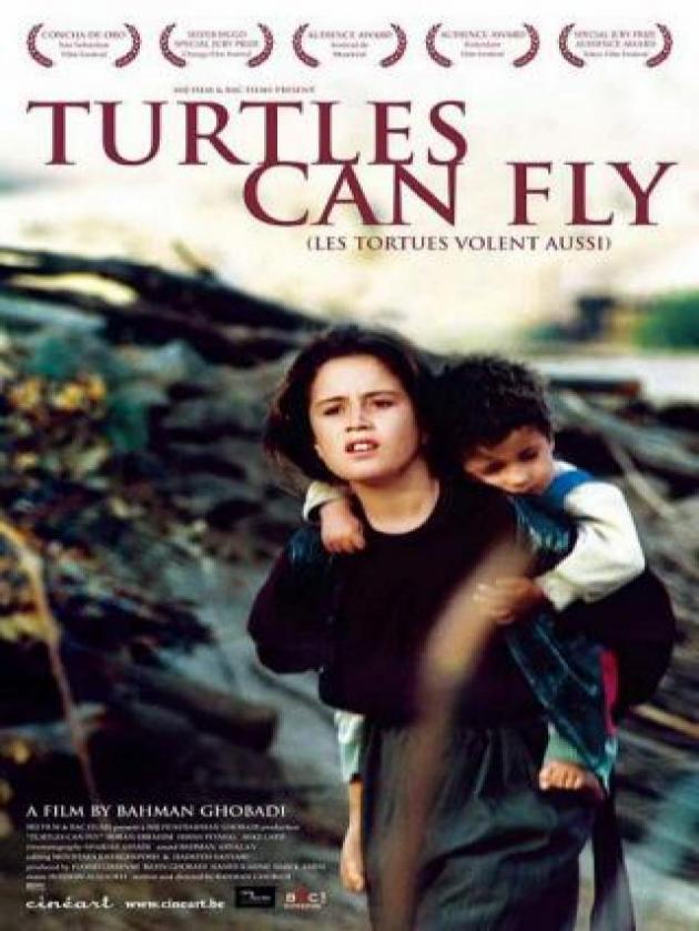As tartarugas podem voar